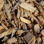 תקריב של שבבי עץ לחיפוי הקרקע